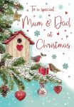 Christmas Card - Mum & Dad Robins - Regal