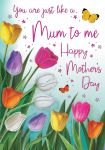 Mother's Day Card - Like a Mum to Me - Tulips - Regal