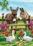 Birthday Card - Donkey Country Friends - Country Cards