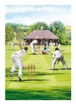 Birthday Card - The Cricket Match - Country Cards