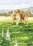 Birthday Card - Golden Retrievers Dog Pair - Country Cards