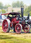 Birthday Card - Traction Engine Rally - Country Cards