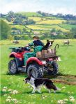 Birthday Card - Checking The Sheep - Quad Bike Farmer - Country Cards