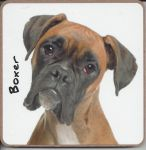 Boxer Dog or Puppy Coaster - Dog Lovers - 2 Designs