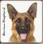 German Shepherd Dog or Puppy Coaster - Dog Lovers - 2 Designs
