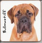 Bullmastiff Dog Coaster - Dog Lovers