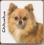 Chihuahua Dog or Puppy Coaster - Dog Lovers - 4 Designs