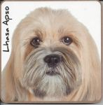 Lhasa Apso Dog Coaster - Dog Lovers