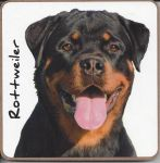 Rottweiler Dog or Puppy Coaster - Dog Lovers - 2 Designs