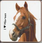 Thoroughbred Horse Coaster - I love Horses