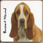 Basset Hound Dog Coaster - Dog Lovers