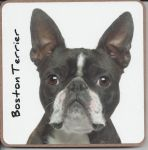 Boston Terrier Dog Coaster - Dog Lovers