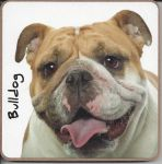 Bulldog Dog Coaster - Dog Lovers