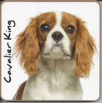 Cavalier King Charles Dog or Puppy Coaster - Dog Lovers - 2 Designs