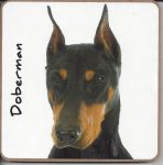 Doberman Dog Coaster - Dog Lovers
