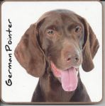 German Pointer Dog Coaster - Dog Lovers