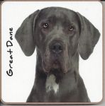 Great Dane Dog Coaster - Dog Lovers