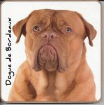 Dogue de Bordeaux Dog Coaster - Dog Lovers