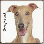 Greyhound Dog Coaster - Dog Lovers