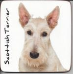 Scottish Terrier Dog Coaster - Dog Lovers