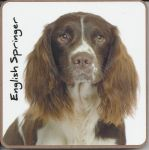 English Springer Spaniel Dog Coaster - Dog Lovers