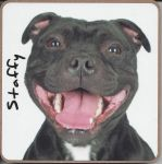 Staffy Dog or Puppy Coaster - Dog Lovers - 2 Designs