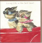 Birthday Card - Life in The Fast Lane - Dog - Angie Thomas
