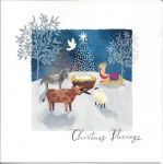 Luxury Boxed Christmas Cards - 12 Cards 3 Designs - Nativity Animals - Ling Design