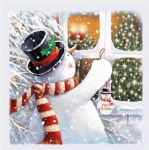 Christmas Card Pack - 5 Cards Snowman Window Glittered Ling Design