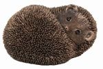 Hedgehog Cold Cast Bronze Ornament - Spike - Frith Sculpture