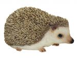 Hedgehog Pygmy - Lifelike Ornament Gift - Indoor or Outdoor - Pet Pals