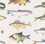 Fish Fishing Wrapping Paper Sheets & Tags - Arty Penguin