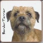 Border Terrier Dog Coaster - Dog Lovers
