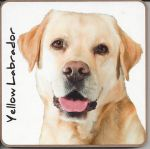 Labrador Dog Puppy Coaster - Dog Lovers 6 Designs