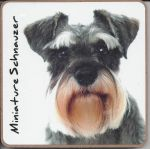 Miniature Schnauzer Dog Coaster - Dog Lovers