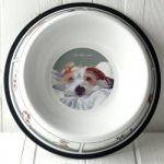 Scruffy Love Wire Hair Jack Russell Tin Dog Bowl - The Little Dog