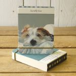 Scruffy Love Wire Haired Jack Russell Flip Notebook - The Little Dog