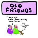 Birthday Card - Old Friends - Adult Rude Funny - Something David
