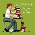 Good Luck in Your Exams Card - Male One Lump Or Two