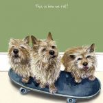 Greetings Card - Norwich Terrier - Skateboard The Little Dog