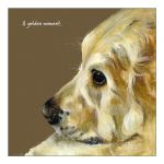 Greetings Card - Golden Retriever - Golden Moment The Little Dog