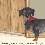 Greetings Card - Wire Haired Dachshund - Dash - The Little Dog
