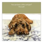 Greetings Card - Cockapoo - The Little Dog