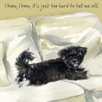 Greetings Card - Havanese Puppy - Cute - The Little Dog