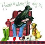 Dog Lover Card - Home is where the Dog is - Sparkle - Alex Clark