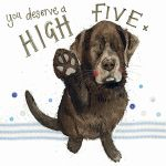 Greetings Card - High Five Dog - Sparkle - Alex Clark