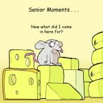 Greetings Card - Mouse Senior Moments - Funny Joke - Twizler
