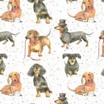 Dachshund Dog Wrapping Paper Sheets & Tags - Arty Penguin