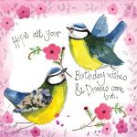 Birthday Card - Blue Tits Birds - Sunshine - Alex Clark