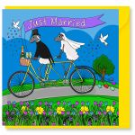Wedding Day Card - Just Married Bicycle Bike - Sheep - Amy Whelan